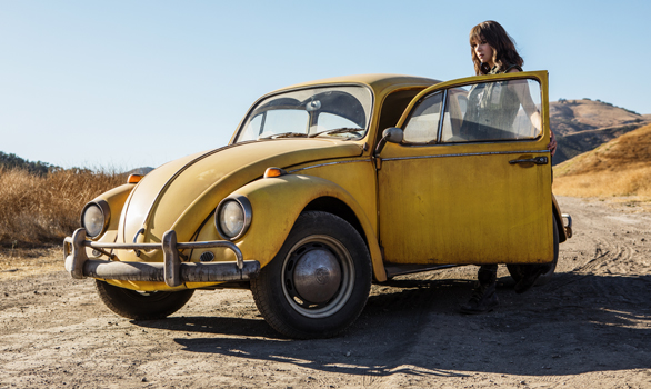 First Look Bumblebee